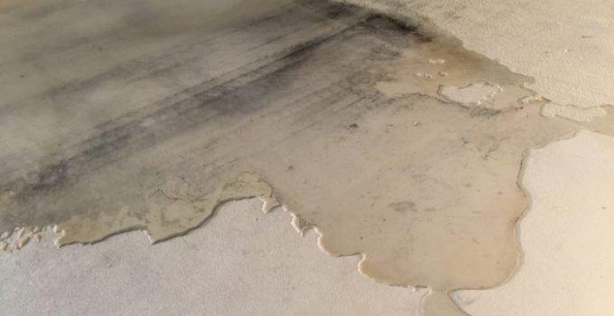Water leak between the wall and floor in your basement?
